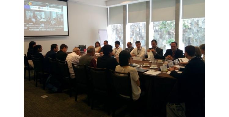 Factores de éxito para reforzar las capacidades institucionales en Desarrollo Alternativo. Estudio de casos: Guatemala, Paraguay, Perú