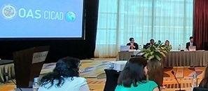 XVII Reunión del Grupo de Expertos en Reducción de la Demanda (CICAD-OEA)