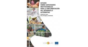 Estudio sobre capacidades institucionales para la implementación del desarrollo alternativo. Estudio de casos: Perú, Paraguay y Guatemala